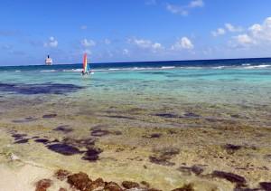 Strand Costa Maya mit Blick zur Carnival Glory