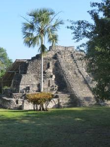 Maya Pyramide Chacchoben